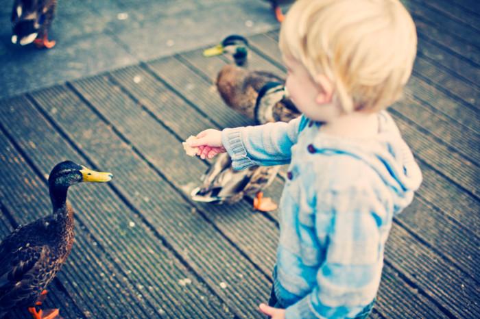 15 игр, которые научат ребенка доброте