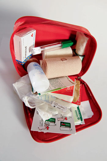 Traveler's First Aid Kit