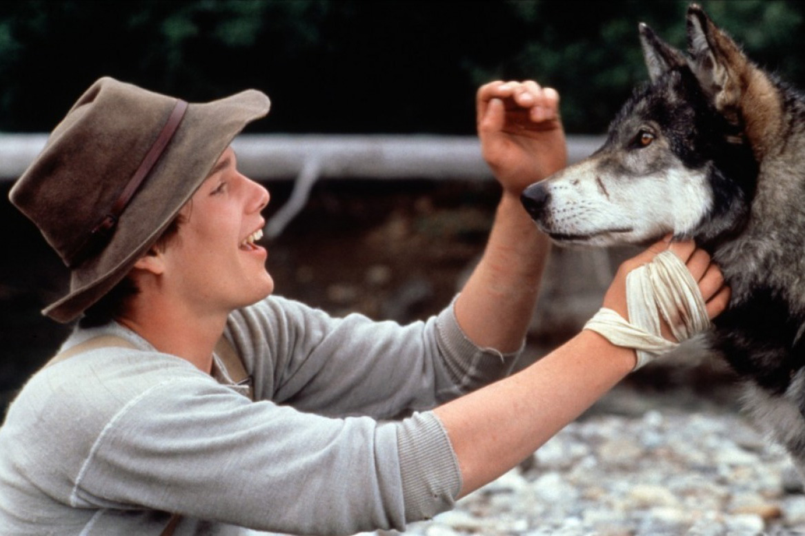 Heroes are not born: 8 films to cultivate masculinity