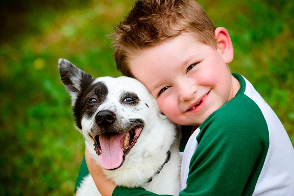 Ребенок хочет собаку: 5 актуальных вопросов