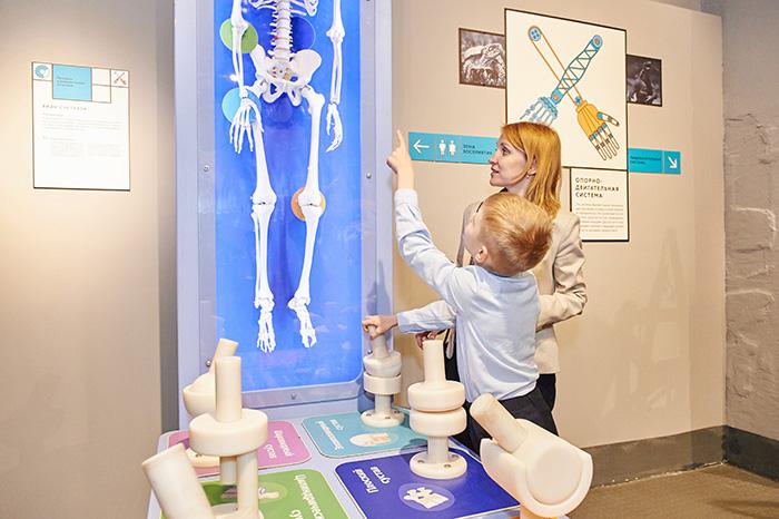 BIOEXPERIMENTANIUM Exhibition