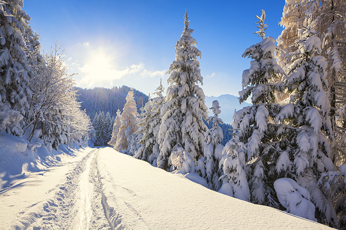 Where to relax in the winter with children