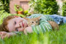 «После мультфильма про кота сын стал мяукать»