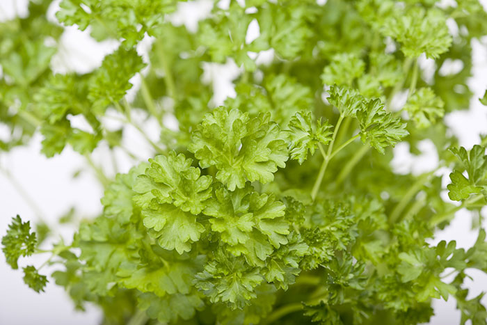 Green vitamins: how to choose and eat safely