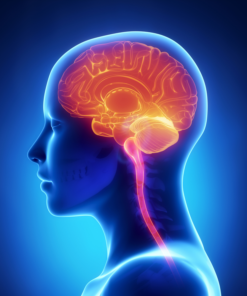 the causes manifestations and effects of inflammation to the brain and central nervous system
