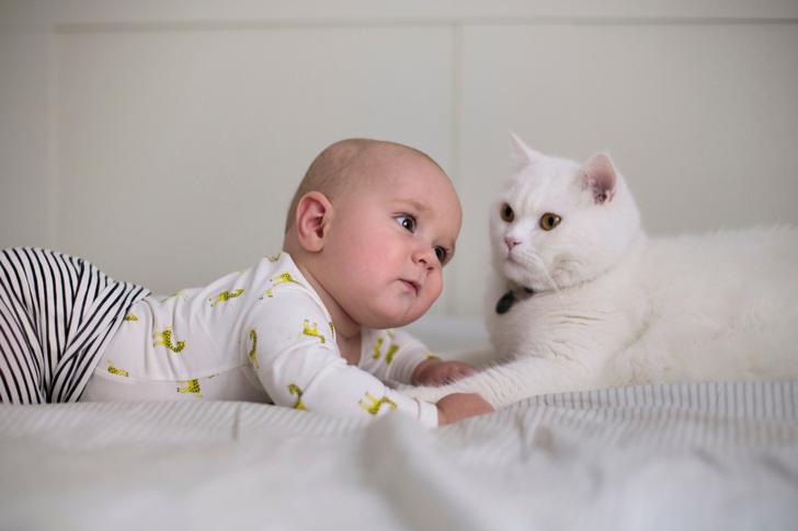 Фото №1 - Малыши месяца. Март 2019